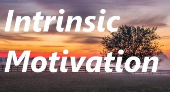 INTRINSIC MOTIVATION : Live Example of Intrinsic Motivation